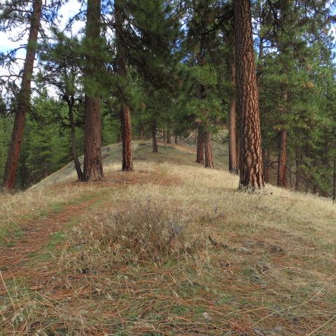 Walking the ridgeline